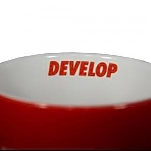 wew-develop